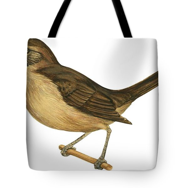 California Thrasher Tote Bag by Anonymous