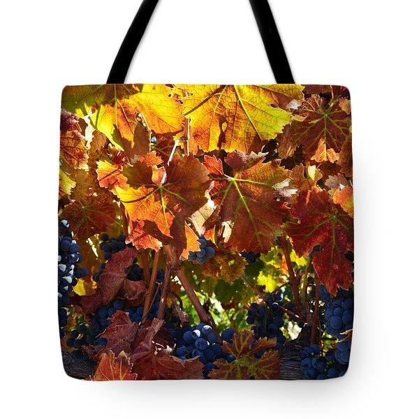 California Wine Grapes Tote Bag