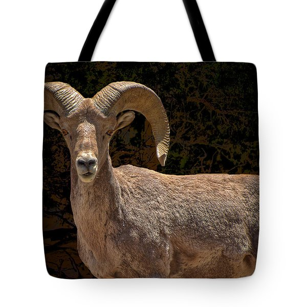 Call Me Dude Tote Bag by Britt Runyon