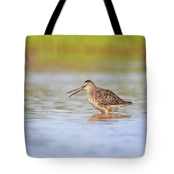 Tote Bag featuring the photograph Call Of A Dowitcher by Ruth Jolly