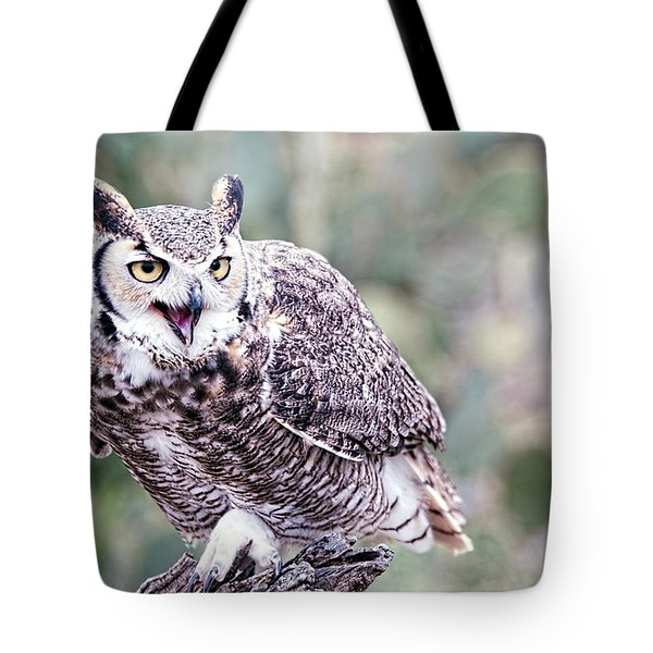Tote Bag featuring the photograph Call Of The Owl by Dan McManus