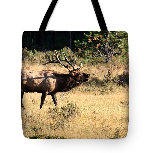 Call Of The Wild Elk Tote Bag by Karen Lee Ensley