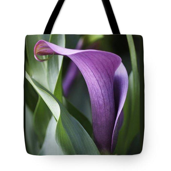 Calla Lily In Purple Ombre Tote Bag by Rona Black