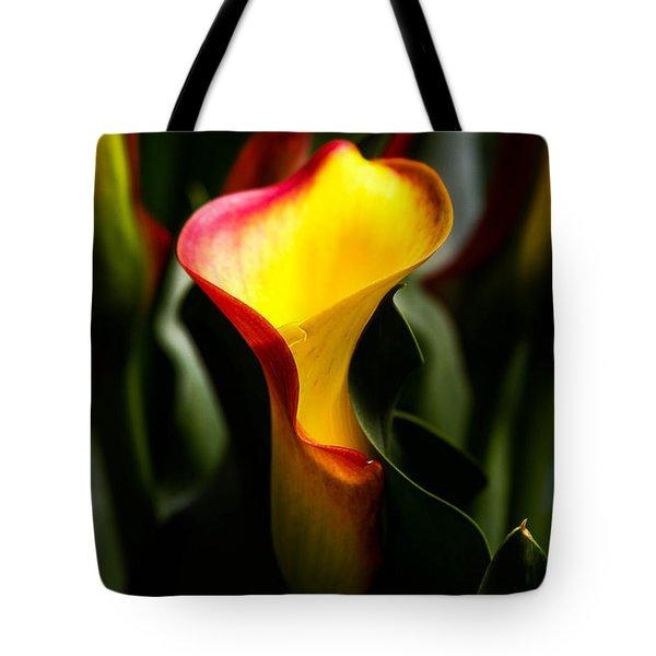 Calla Lily Tote Bag by Menachem Ganon