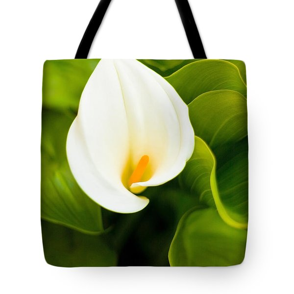 Tote Bag featuring the photograph Calla Lily Plant by Richard J Thompson