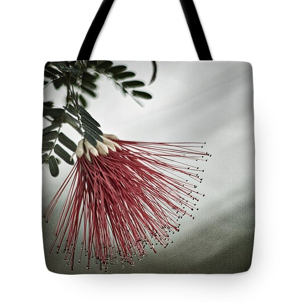 Calliandra Californica Tote Bag