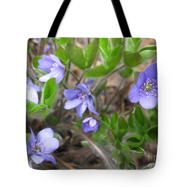 Calling Spring Tote Bag by Ausra Huntington nee Paulauskaite