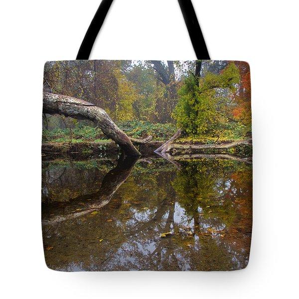 Calm On Big Chico Creek Tote Bag