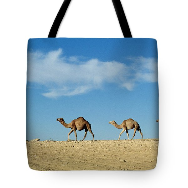 Camel Train Tote Bag