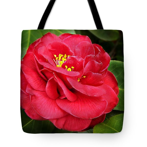Tote Bag featuring the photograph Camellia Japonica ' Dixie Knight ' by William Tanneberger
