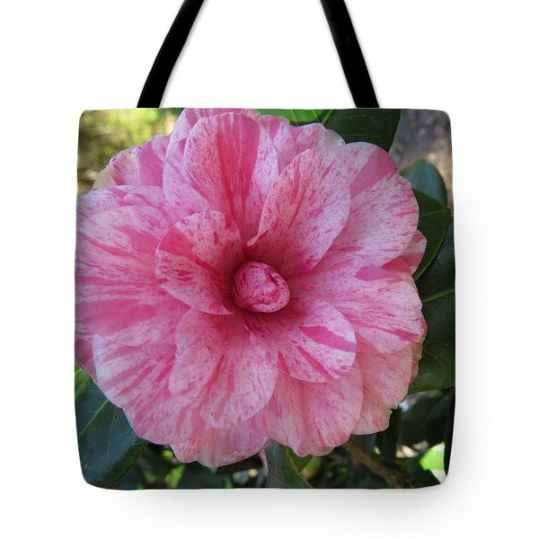 Camellia Japonica II Tote Bag by Zina Stromberg