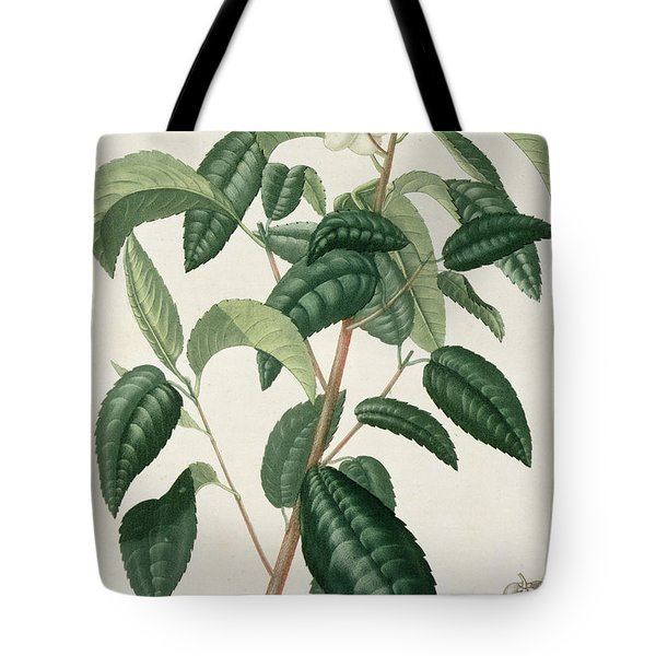 Camellia Thea Tote Bag by LFJ Hoquart