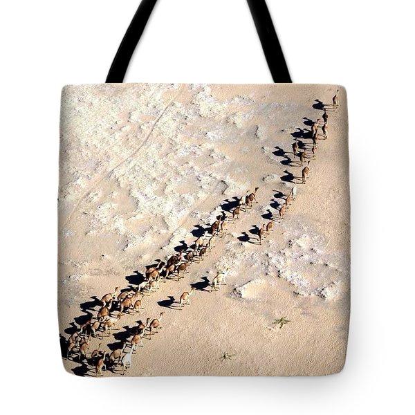 Camels Walking In Desert Tote Bag