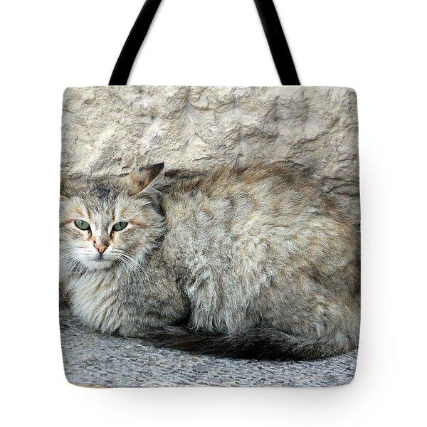 Camo Cat Tote Bag