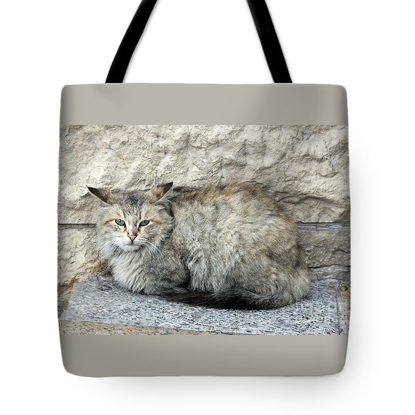 Camo Cat Tote Bag