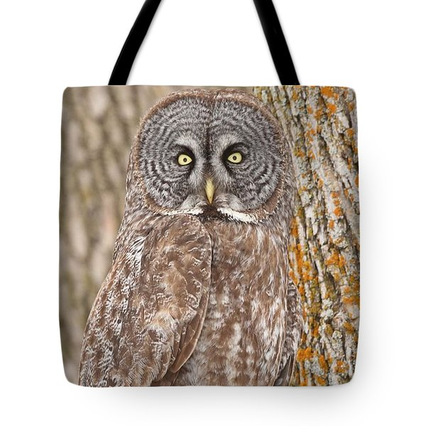 Camouflage-an Owl's Best Friend Tote Bag by Heather King