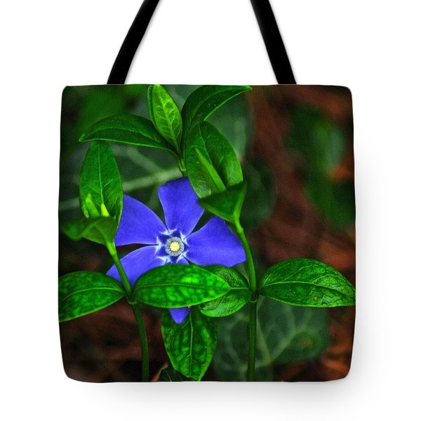 Camouflage Tote Bag by Frozen in Time Fine Art Photography