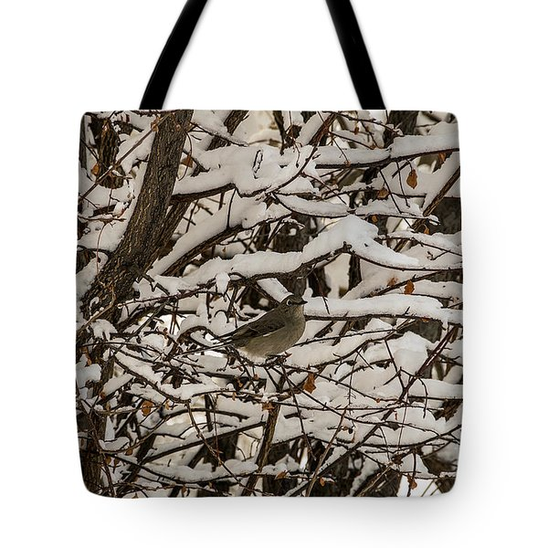 Camouflaged Thrush Tote Bag