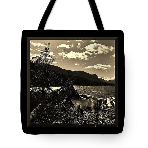 Camp Site Tote Bag