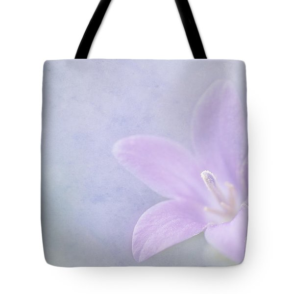 Campanula Portenschlagiana Tote Bag by John Edwards