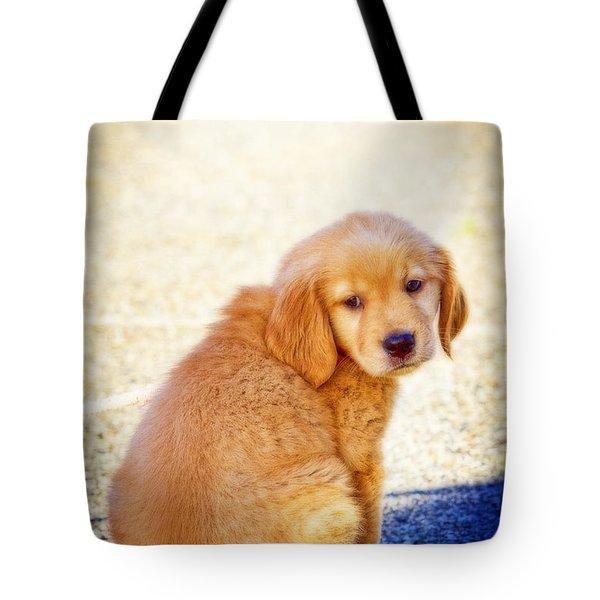 Can I Play Too Tote Bag