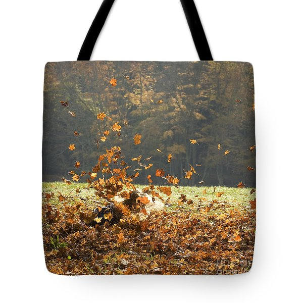Tote Bag featuring the photograph Can You See Me? by Carol Lynn Coronios