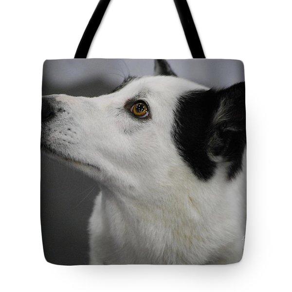 Canaan Dog Tote Bag by DejaVu Designs