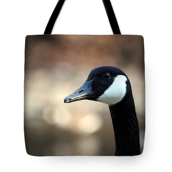 Canadian Goose Tote Bag by David Jackson