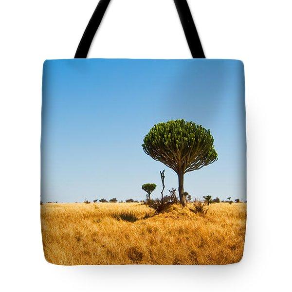 Candelabra Trees Tote Bag by Adam Romanowicz
