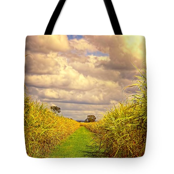 Tote Bag featuring the photograph Cane Fields by Wallaroo Images