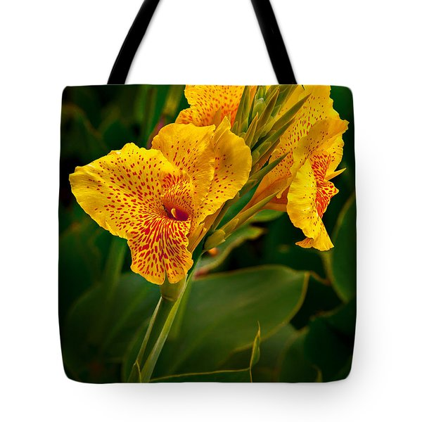 Canna Blossom Tote Bag by Mary Jo Allen