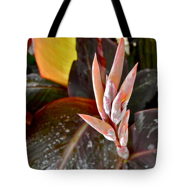 Canna Lilies IIi  Tote Bag by Kirsten Giving
