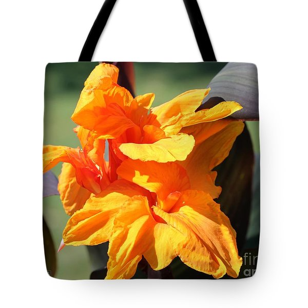 Canna Lily Named Wyoming Tote Bag by J McCombie