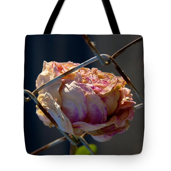 Tote Bag featuring the photograph Can't Fence Me In - Faded Rose Art Print by Jane Eleanor Nicholas