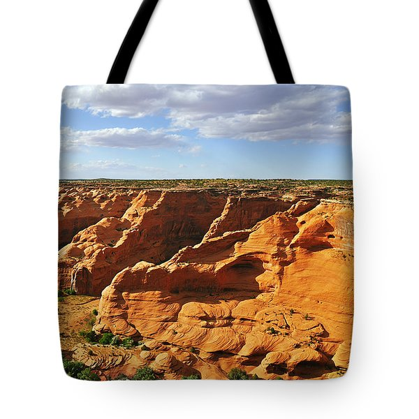 Canyon De Chelly From Face Rock Overlook Tote Bag by Christine Till