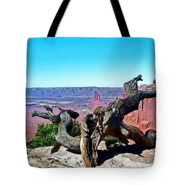 Canyon Lands National Park Tote Bag