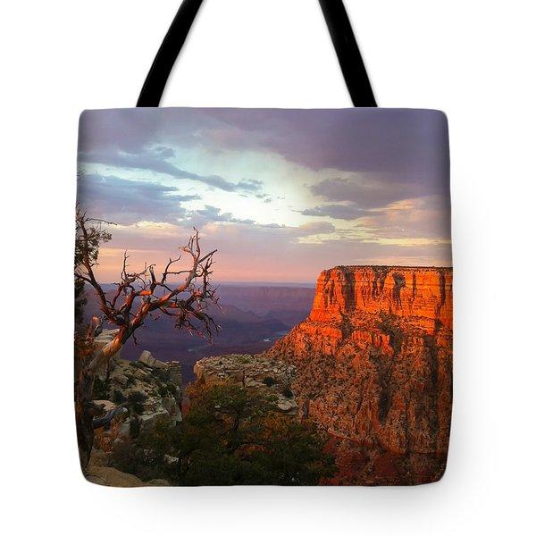 Canyon Rim Tree Tote Bag by Heidi Smith