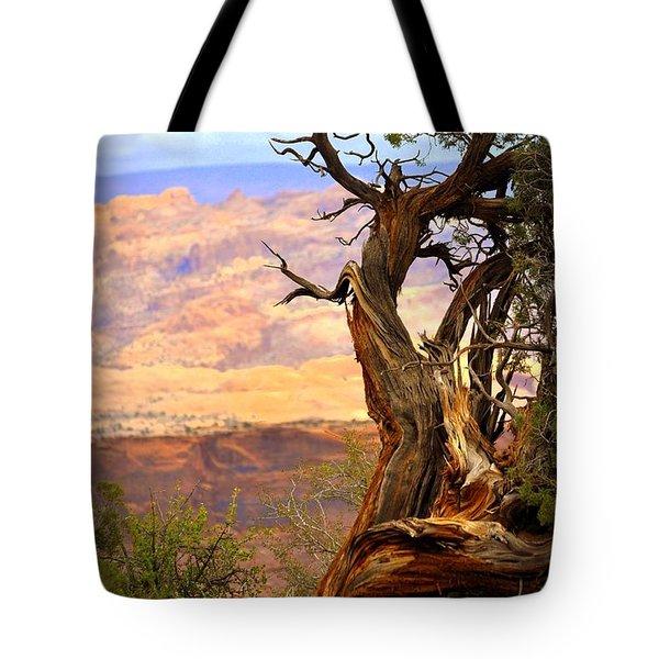 Canyon Vista 1 Tote Bag by Marty Koch