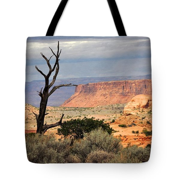 Canyon Vista 2 Tote Bag by Marty Koch