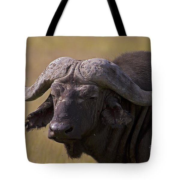 bathroom shower curtains cape buffalo 0607 photograph by j l woody wooden 28966
