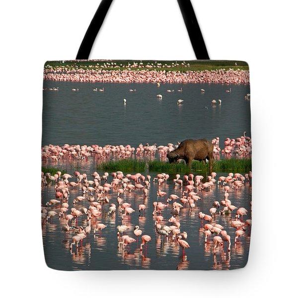 Cape Buffalo And Lesser Flamingos Tote Bag