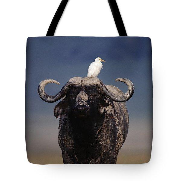 Cape Buffalo With Cattle Egret In Tanzania Tote Bag