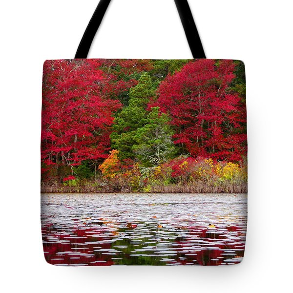 Cape Cod Autumn Tote Bag by Dianne Cowen