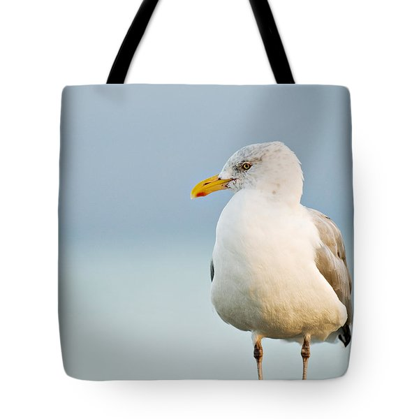 Cape Cod Seagull Tote Bag