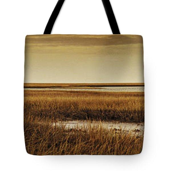 Cape Romaine Tote Bag by Bruce Bain