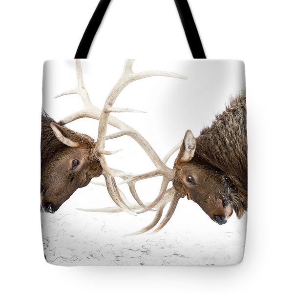 Captive A Pair Of Large Rocky Mountain Tote Bag