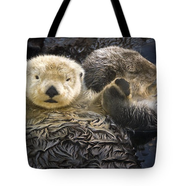 Captive Two Sea Otters Holding Paws At Tote Bag