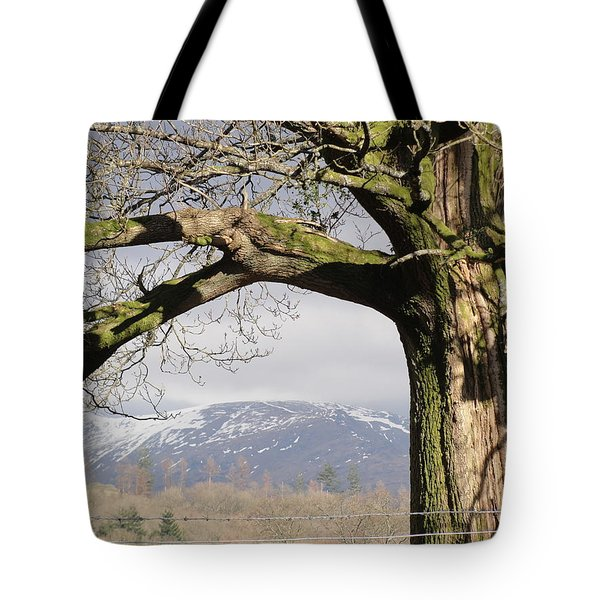 Tote Bag featuring the photograph Capture The Moment by Tiffany Erdman