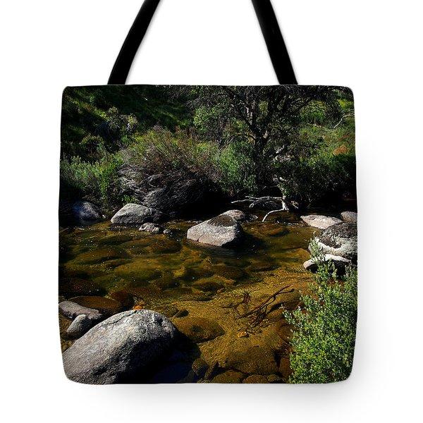 Captured Clarity Tote Bag by Kaleidoscopik Photography