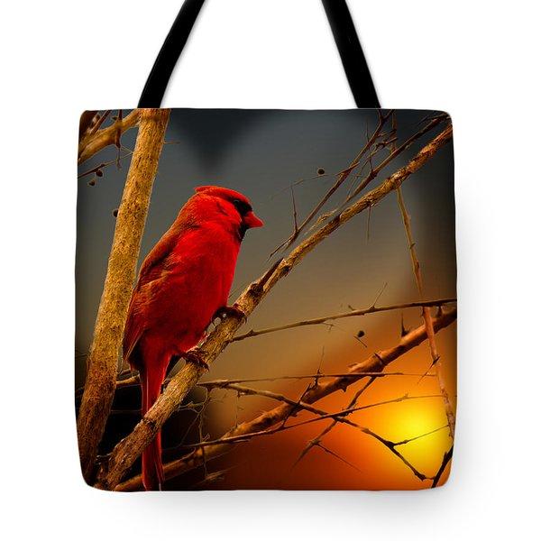 Cardinal At Sunset Valentine Tote Bag
